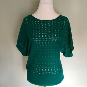 Limited scoop neck short sleeve sweater NWT
